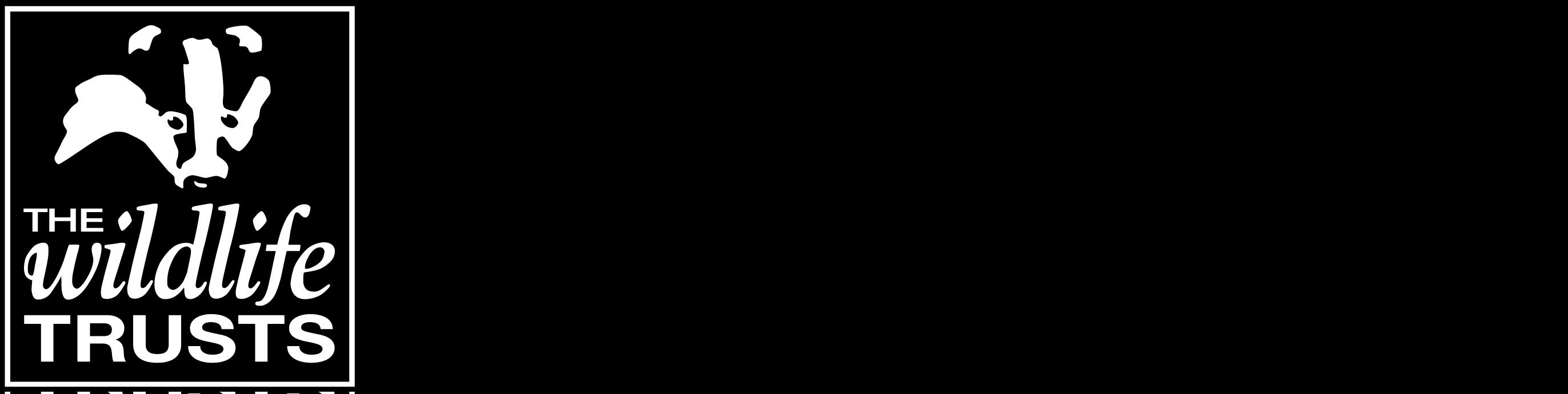 CWT Logo Landscape Left Aligned