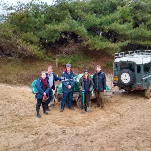 Volunteers - marram removal for sand lizard vivarium