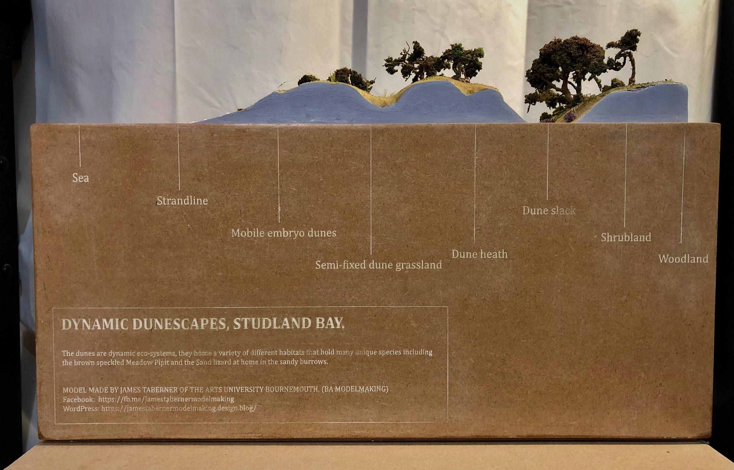 Dunescape front image (2)