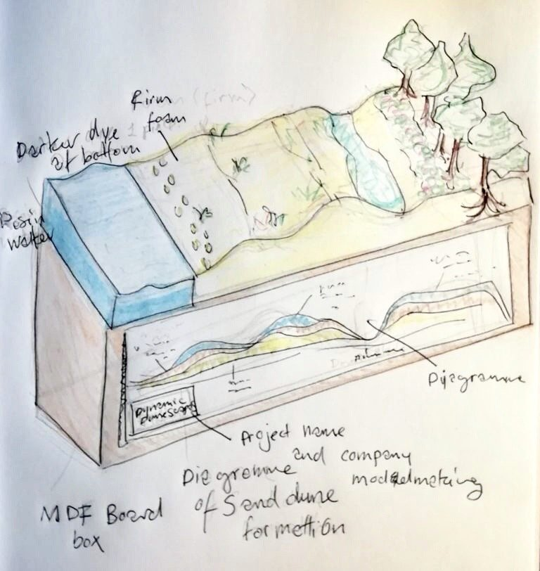 a hand-drawn sketch on paper of a model which shows the different successional stages of sand dunes