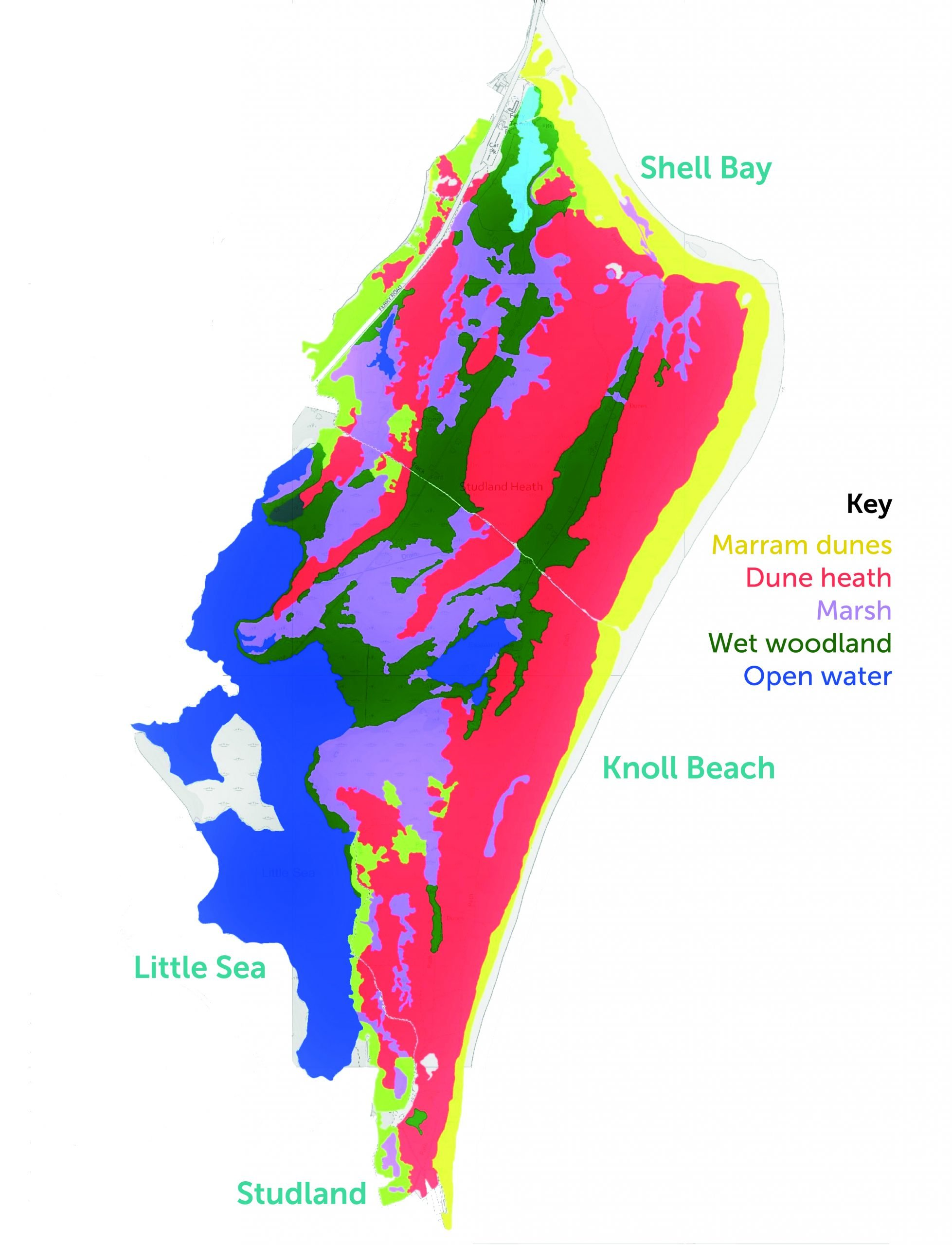 A colourful map of Studland bay