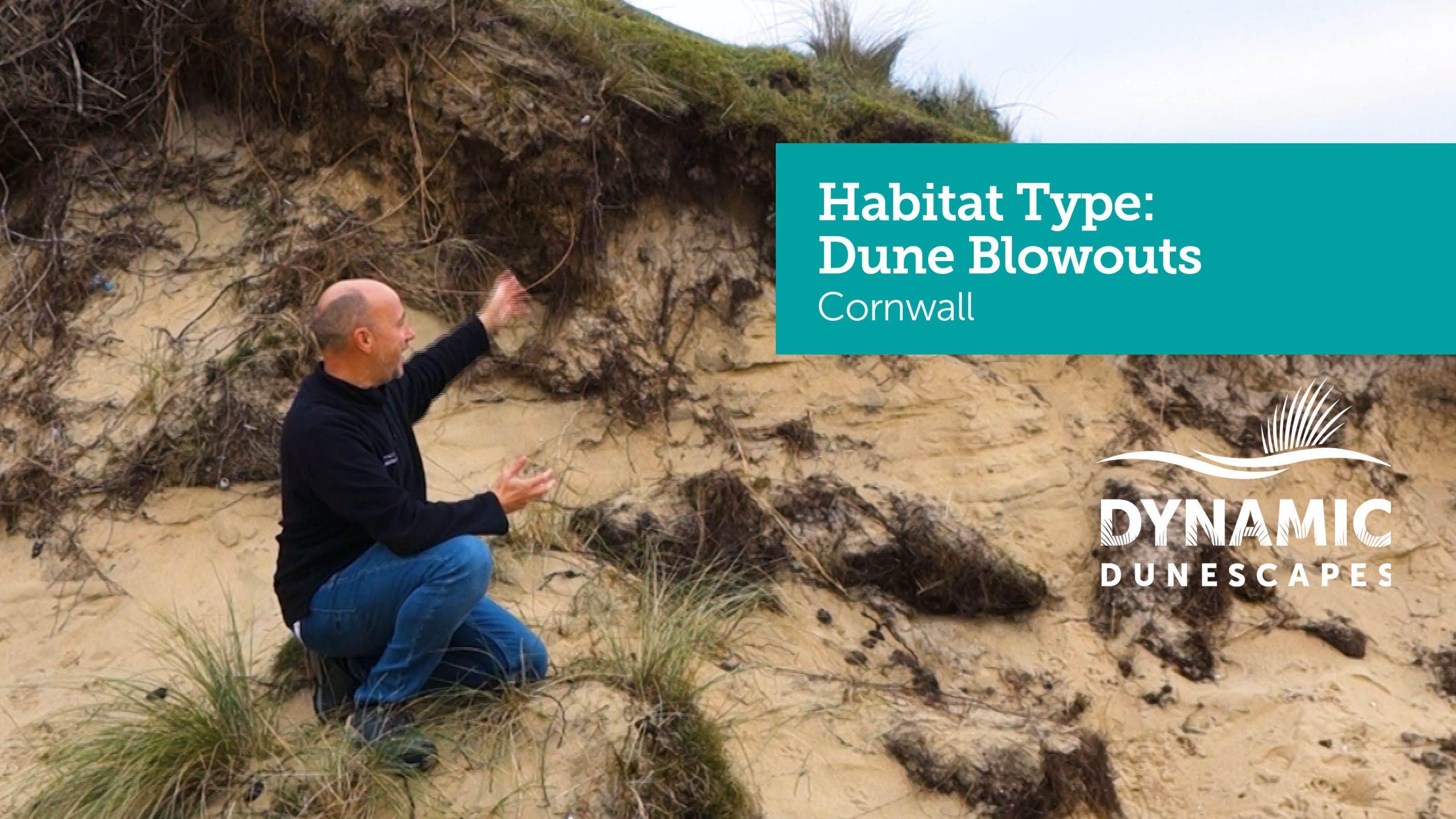Cornwall Blowout Thumbnail
