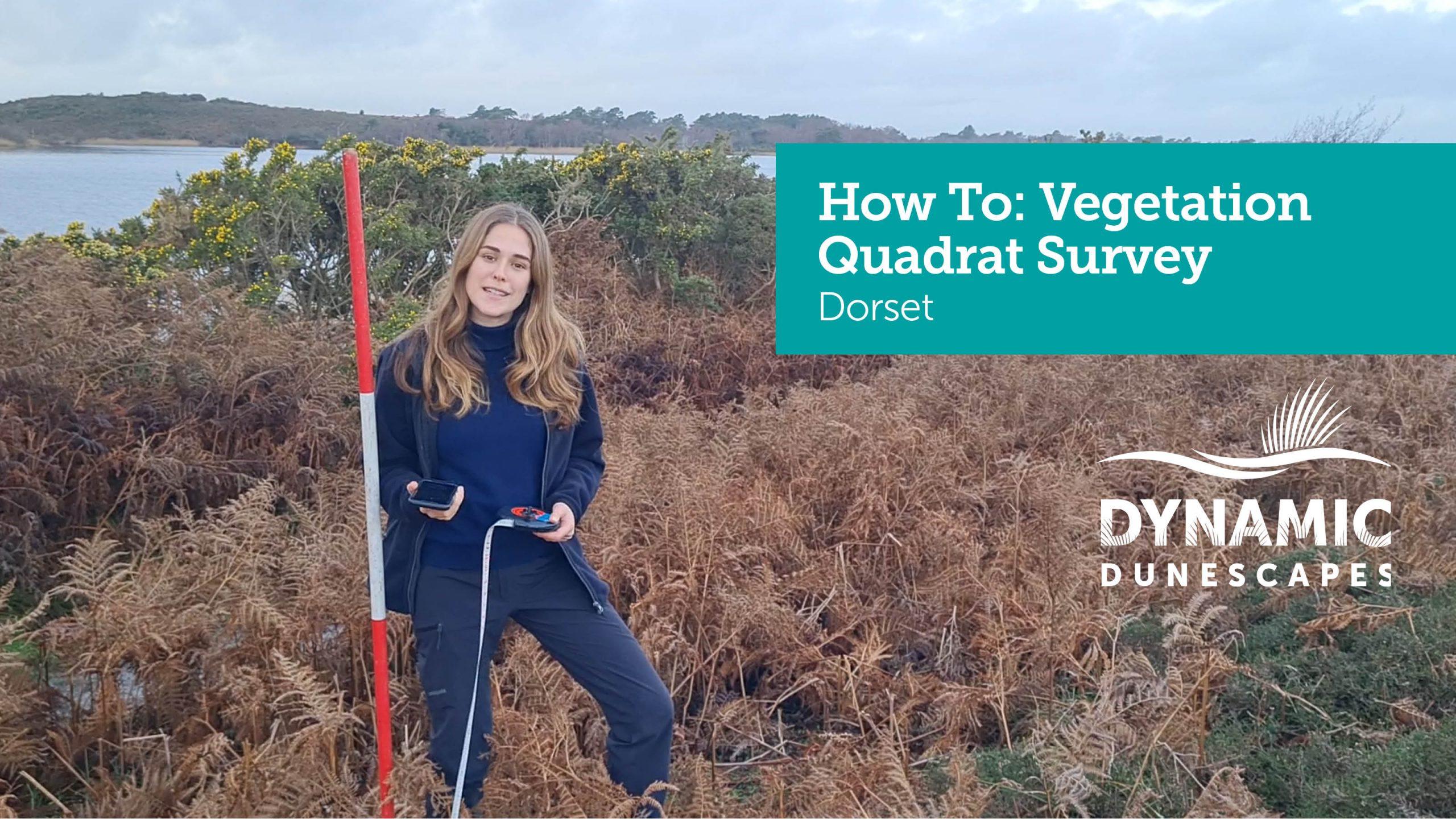 Vegetation Quadrat Thumbnail