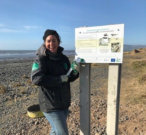 Ground Nesting Birds North Walney Mar 2021 (1)
