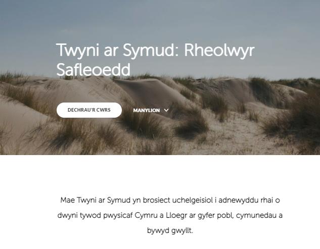 Welsh SDM
