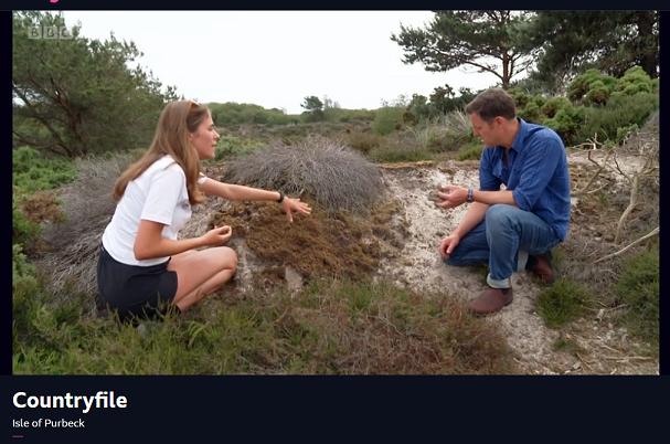 Julia shows Matt Baker around the dunes at National Trust Studland Bay