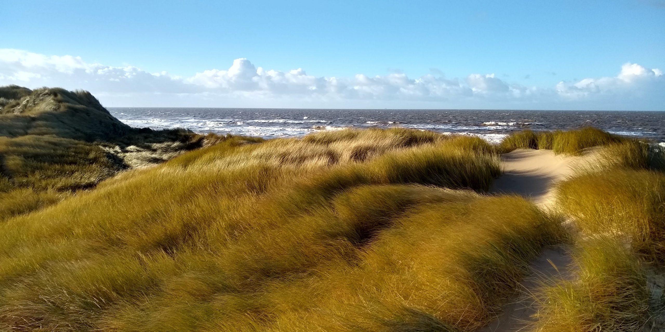 Ainsdale Duens Coast 1 Natalie Hunt