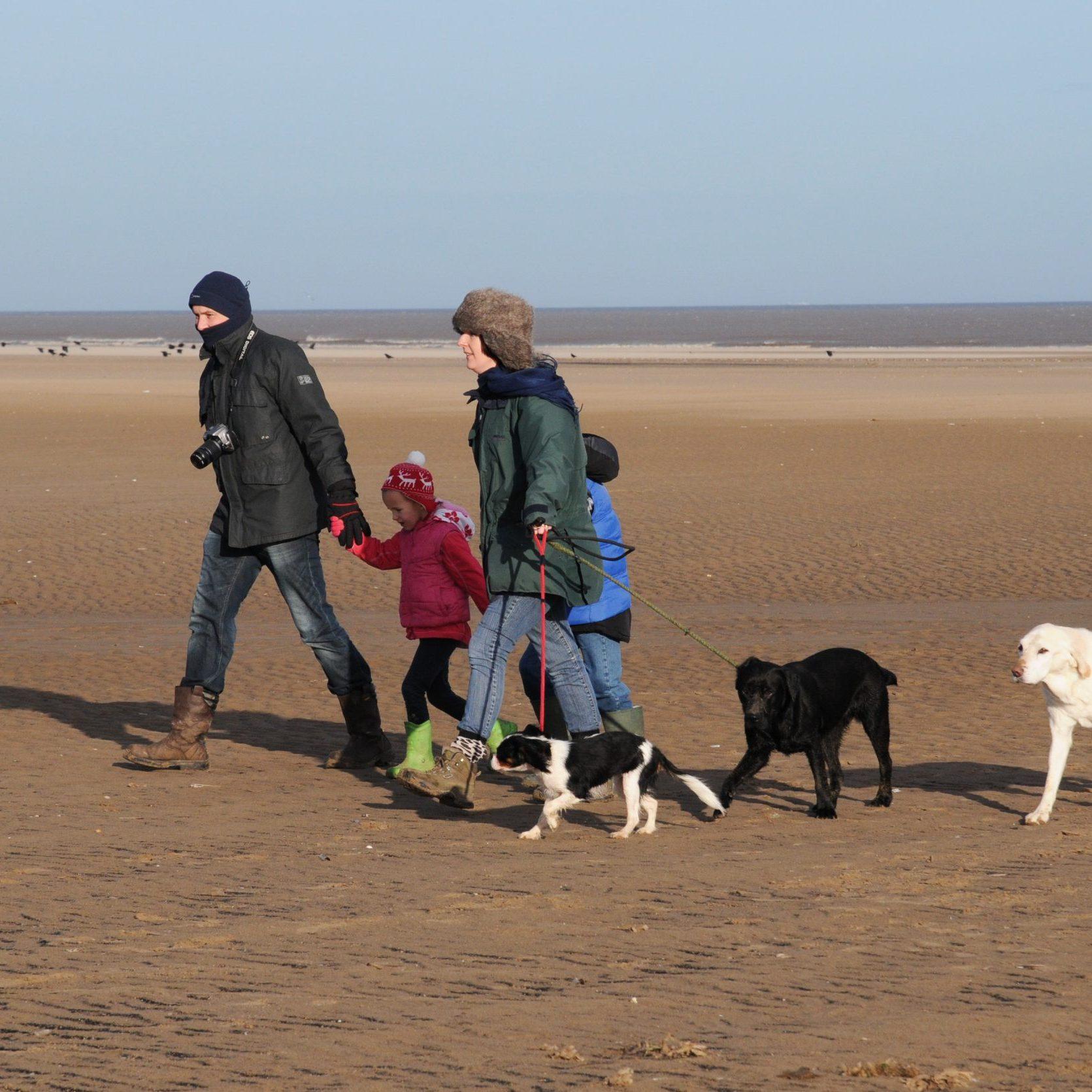 Saltfleetby - dog walking family on beach