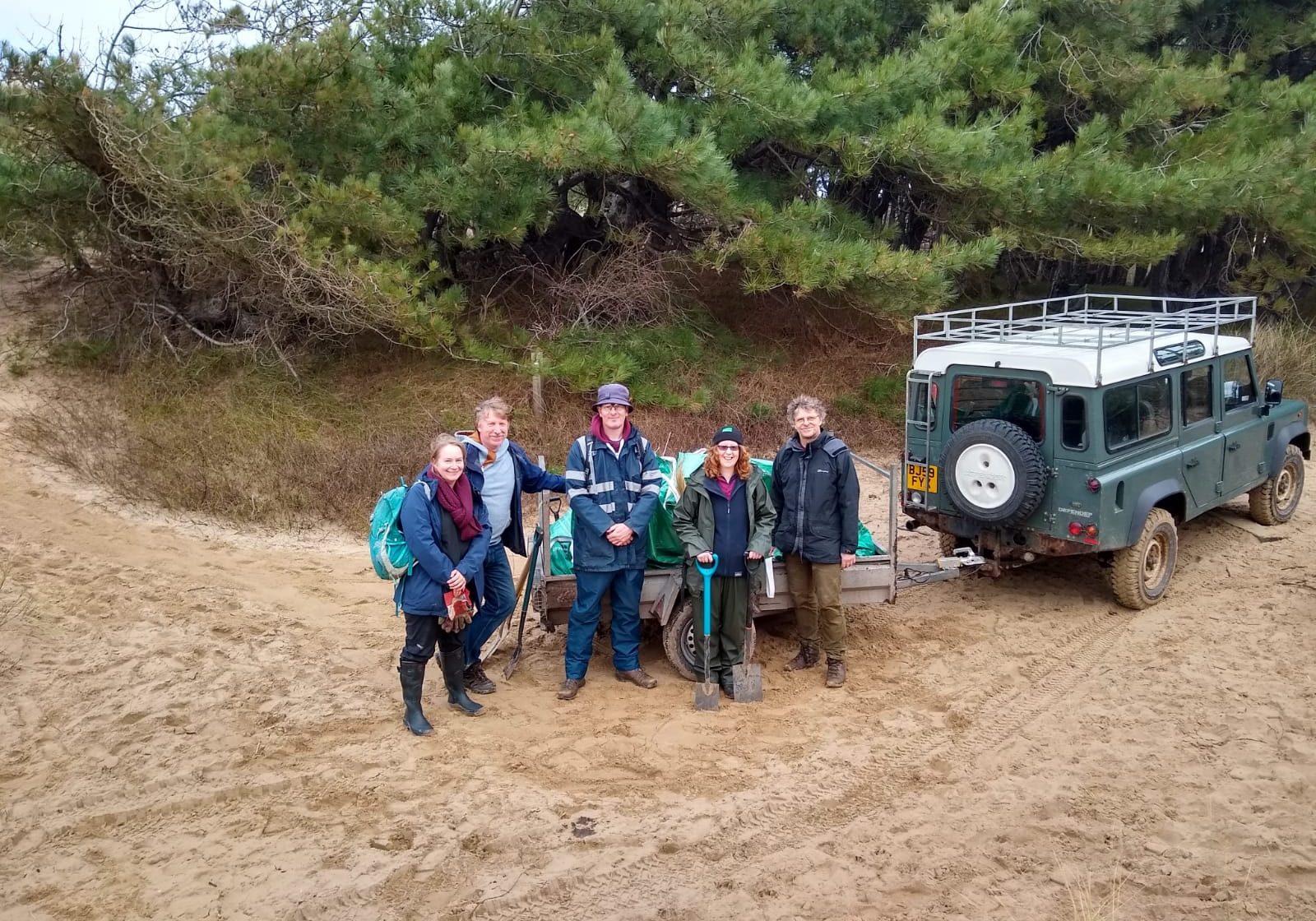 Volunteers - marram removal for sand lizard vivarium