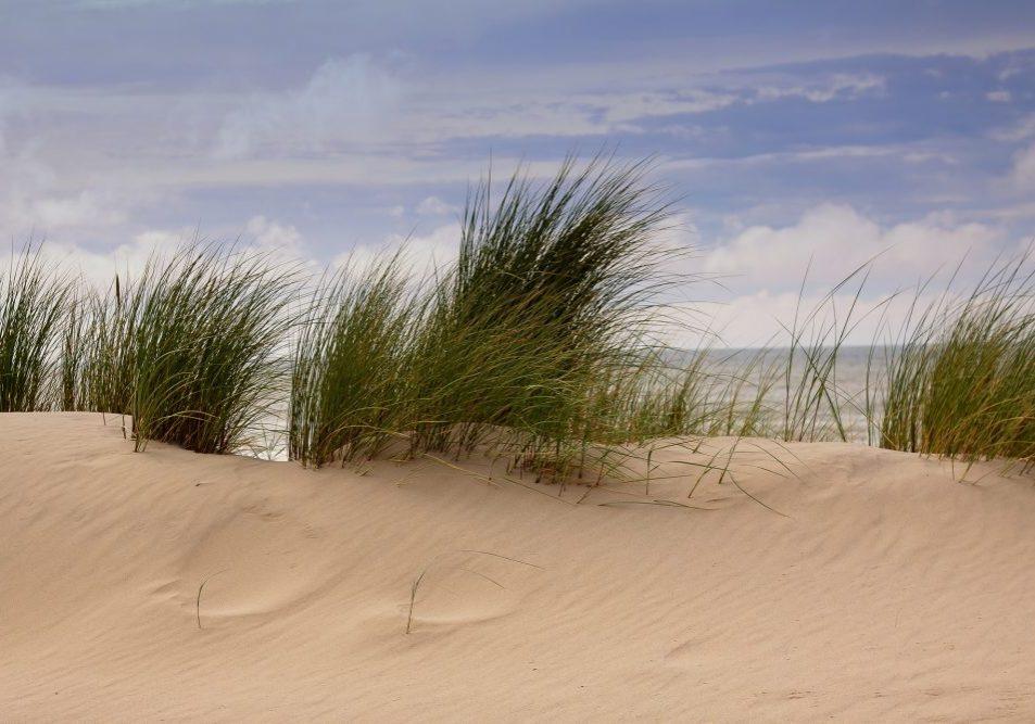 dunes-4340042_1920